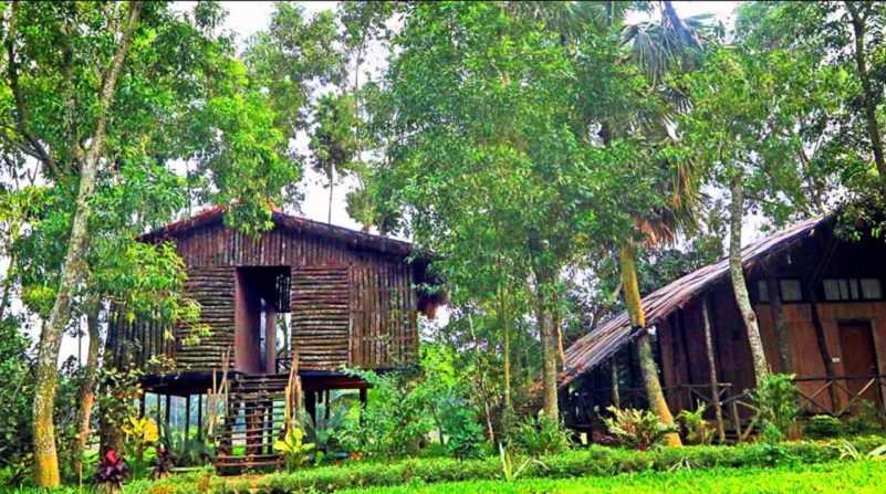 Chuti Resort