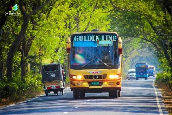 golden line paribahan 2021